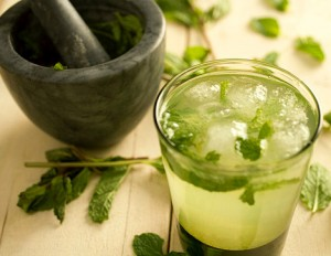 trangvikhang6 300x232 Thức uống bổ dưỡng cho người bị đau dạ dày