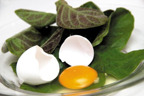 1377505422 lamo jpg Tạm biệt đau bụng bằng lá mơ chưng trứng gà