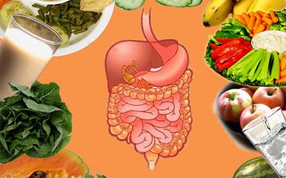 Bị mắc  rối loạn tiêu hóa có cần ăn kiêng hay không?