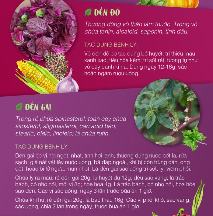 trang vi khang tao bon2 Rau Dền: Vị thuốc quý rẻ tiền nhưng hiệu quả